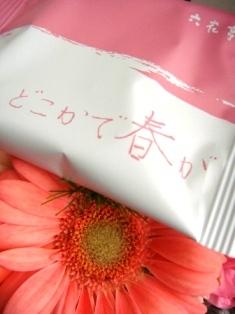 六花亭6.JPG
